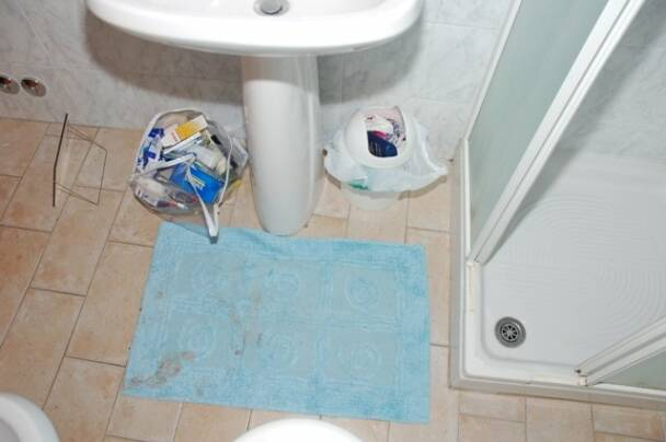 The photo below shows the bathmat in the bathroom  You can see the bare  foot print  set in blood  on the bottom left corner of the bathmat. The Truth About the Bare Footprint on the Bathmat